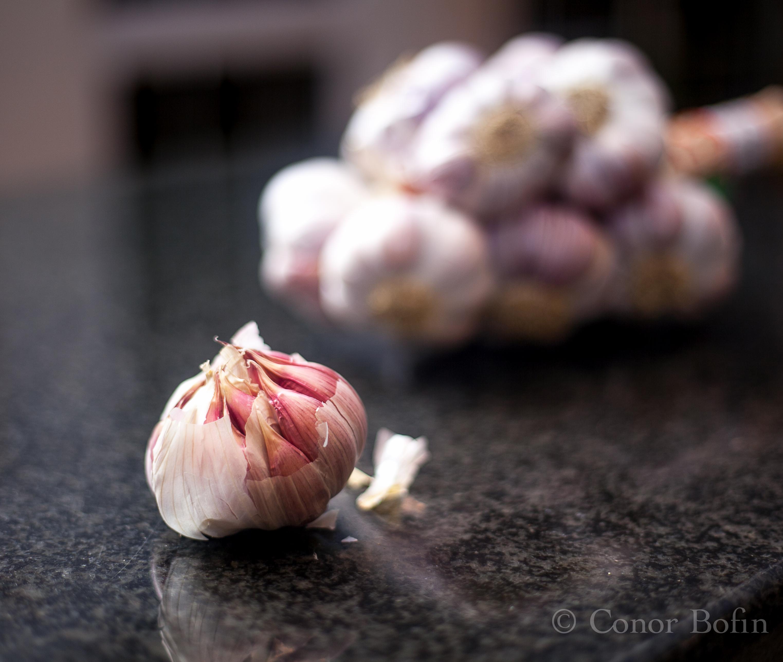 Garlic from Lautrec