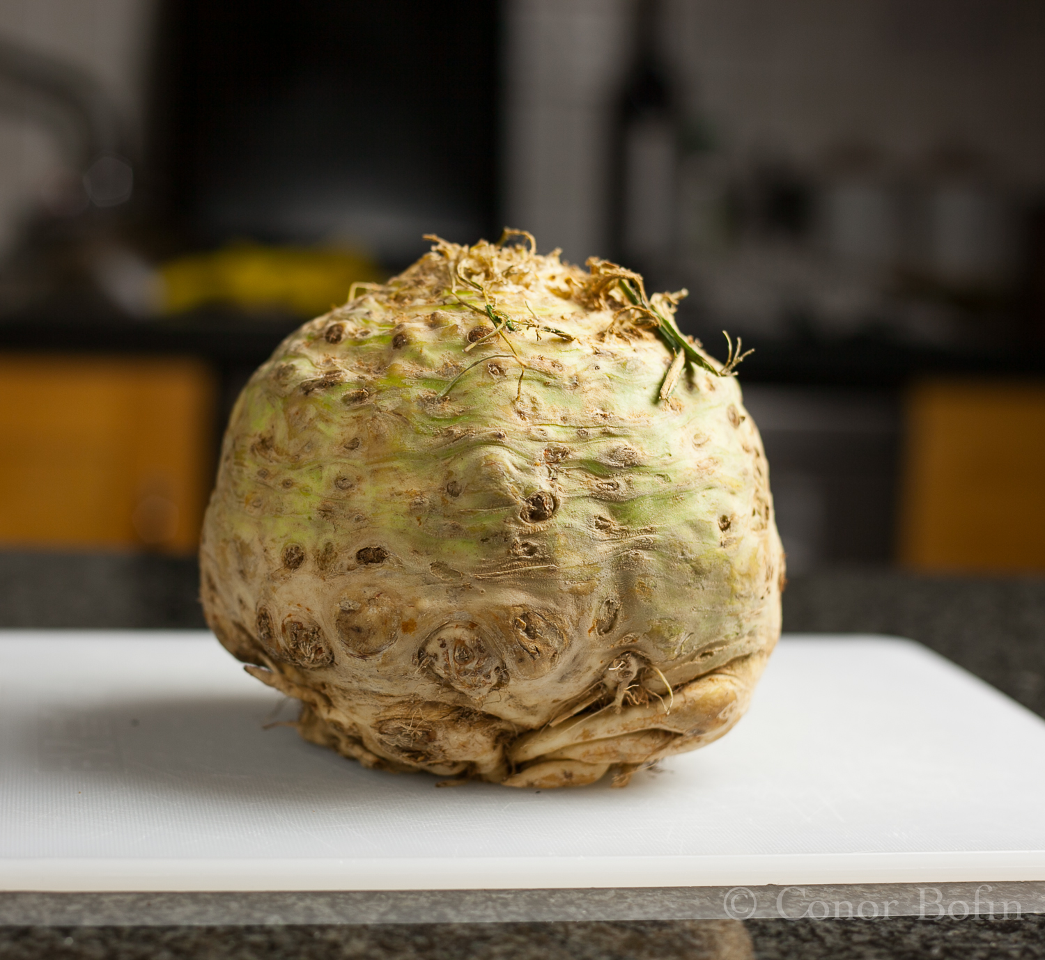The celeriac is one ugly vegetable. It tastes great though.