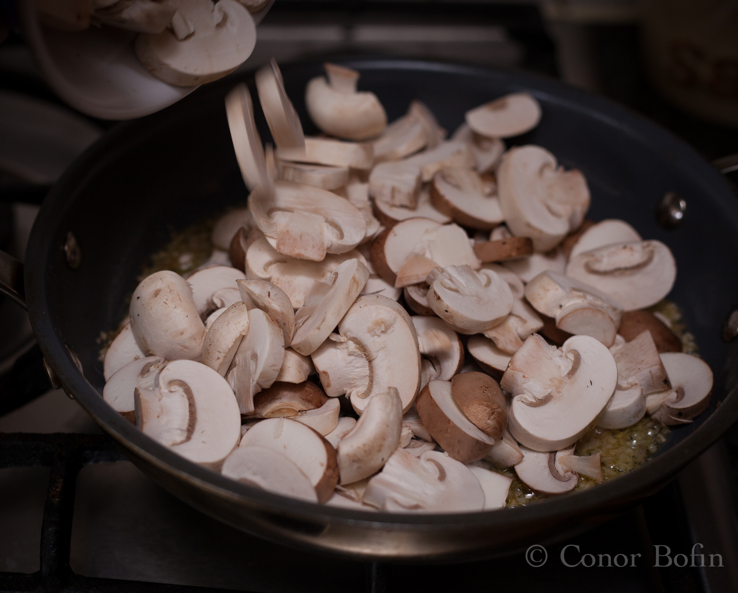 If you love mushrooms, vote for me! If you don't vote for me anyway.
